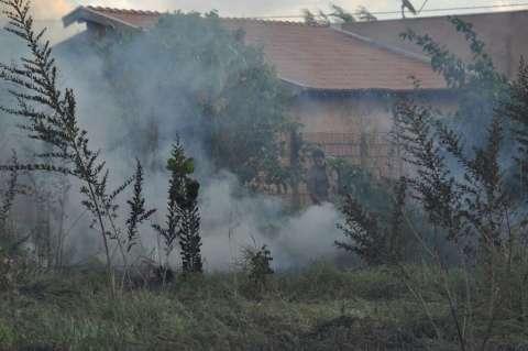 Incêndio em terreno baldio assusta moradores no bairro Centro-Oeste