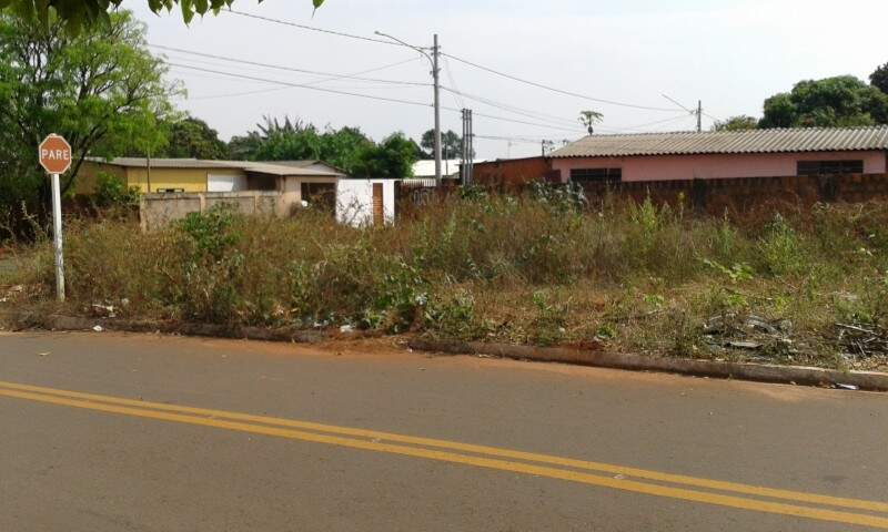 No local, além do mato alto e a grande quantidade de lixo, são jogados animais mortos, segundo moradores. (Foto: Direto das Ruas)