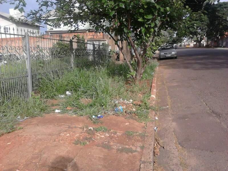 O mato alto que tomou conta do terreno se alastrou pela calçada de rua na Vila Planalto.(Foto:Direto das Ruas)