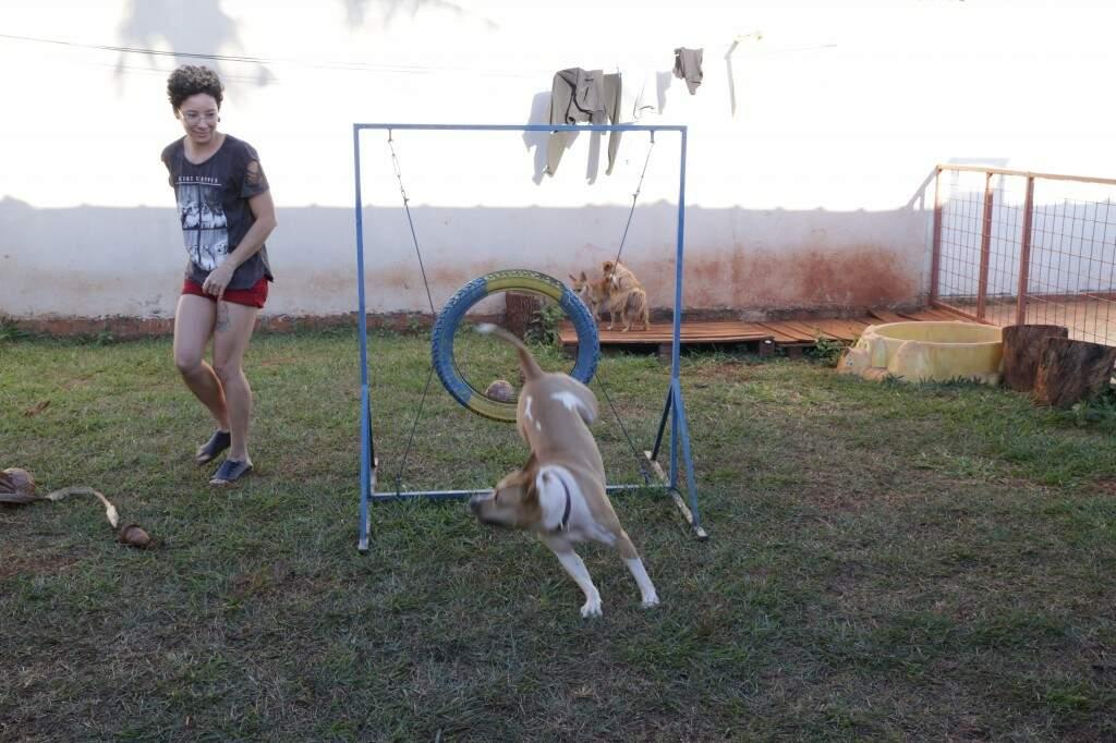 Estela é única pitbull a participar da cãoterapia dos Bombeiros. (Foto: Kísie Ainoã)