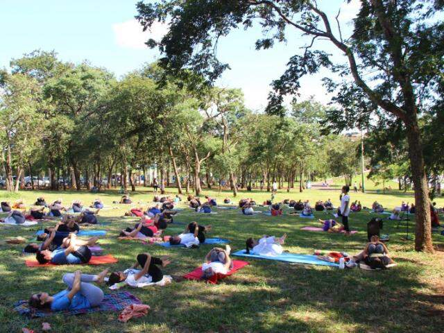 Cerca de 100 pessoas participaram da ação no Parque neste final de semana. (Foto: Fernando Antunes)