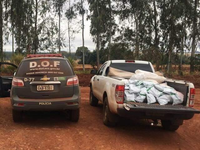 DOF apreendeu 380 quilos de agrotóxicos contrabandeados em Laguna Carapã (Foto: Divulgação/DOF)
