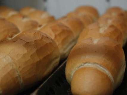 Variação do pão francês é de 76% e do leite chega a 100%, mostra Procon
