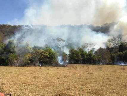 Incêndio já dura 12 dias e atinge mais de 5 fazendas no leste de MS
