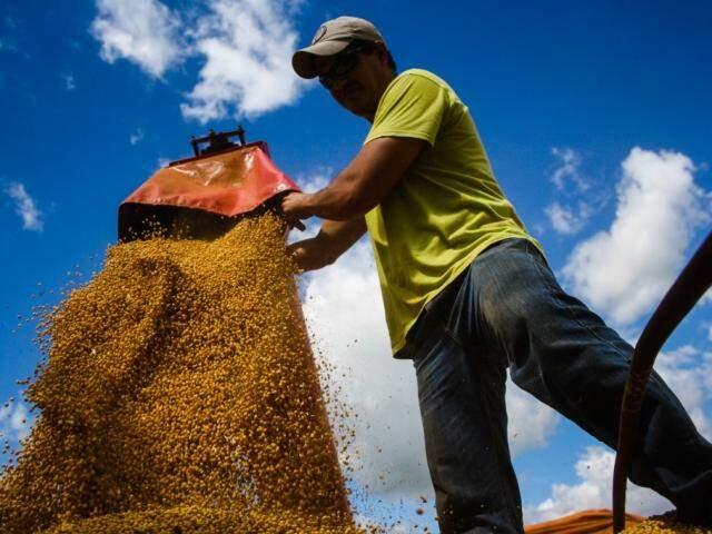 Soja colhida na safra passada em Mato Grosso do Sul: avanço nas vendas do ciclo 2016/2017 foi menor que neste ano (Foto: Marcos Ermínio/arquivo)