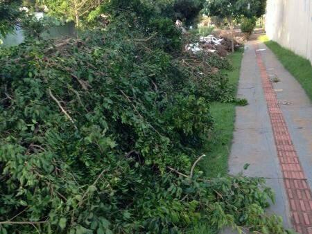 Entulho no Jardim Imá não foi retirado e em uma semana recebeu mais lixo (foto Direto das Ruas)