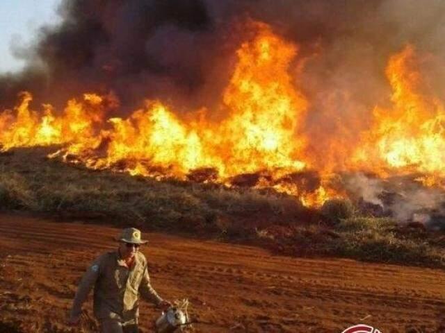 Incêndios florestais estão entre desastres registrados. (Foto: Divulgação/ Corpo de Bombeiros)