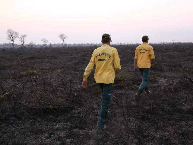 Focos de incêndio se intensificaram no Pantanal desde agosto deste ano (Foto: Arquivo/Paulo Francis)