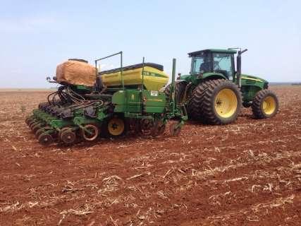 Produtores do Estado retomam o plantio da soja à espera da chuva
