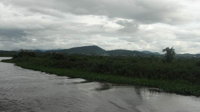 Taxa de desmatamento no Pantanal ficou em 0,12% entre os anos de 2008 e 2009. (Foto: Lucimar Couto)