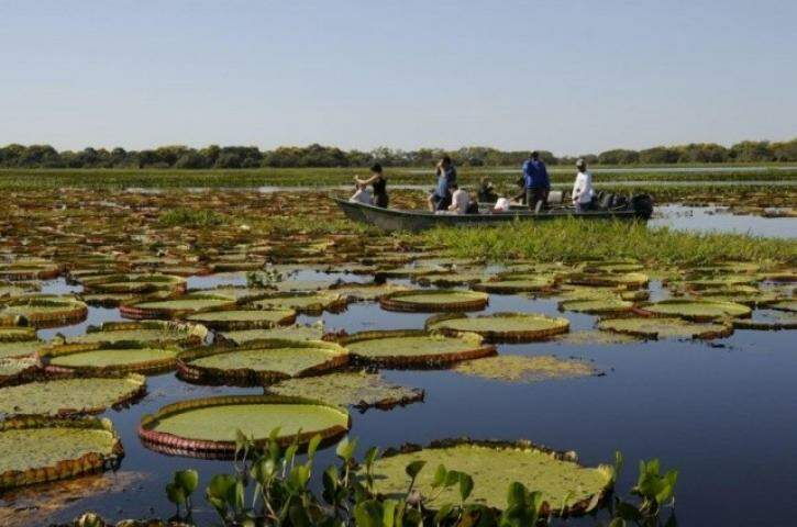 Turismo ecológico, realizado no Pantanal. Receptividade é muito bem avaliada pelos visitantes internacionais. (Foto: Divulgação/ Raquel Passos)