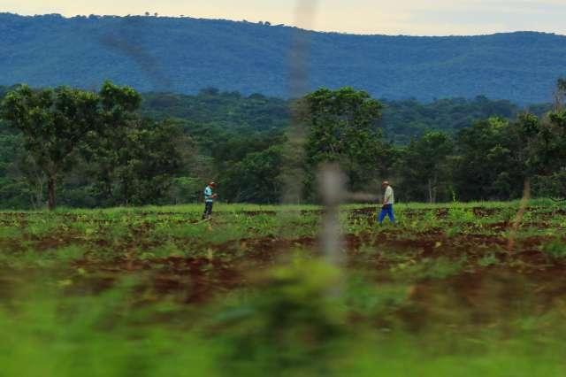 No km 24, Aguão é terra fértil e coração sertanejo dentro da Capital