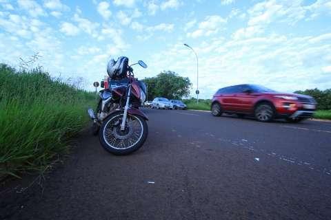 Duas capivaras morrem atropeladas e motociclista fica ferido em acidente