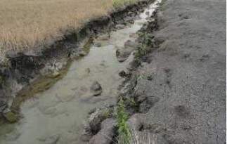 Fotografia de dreno anexada ao processo que tramita em Bonito. (Foto: Reprodução)