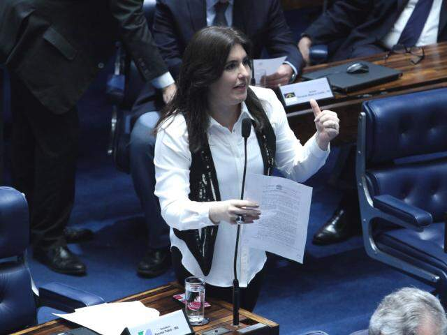 Simone lembrou apontamentos do Banco Mundial de que burocracia é mais cara para o país do que a cobrança de impostos. (Foto: Divulgação/Assessoria)