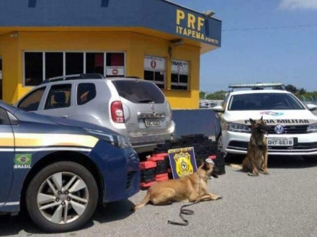 Cães auxiliaram policiais a encontrar as drogas (Foto: Divulgação/PRF)