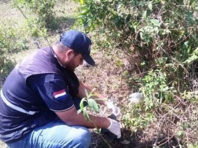 Ossada foi recolhida por investigadores e será entregue para peritos da Polícia Nacional Paraguaia (Foto: Divulgação/Porã News)