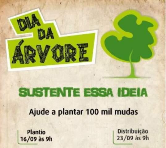 Semana da Árvore é realizada entre 16 e 23 de setembro em comemoração ao Dia da Árvore, que acontece no dia 21 de setembro (Foto: Divulgação)