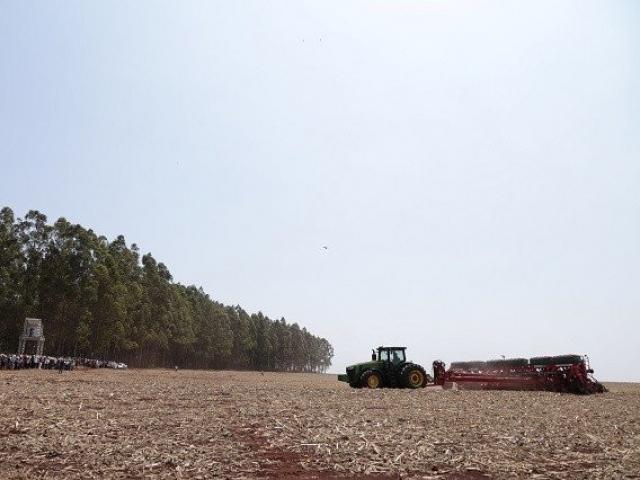 Plantio da safra passada de soja em MS (Foto: Aprosoja/arquivo)