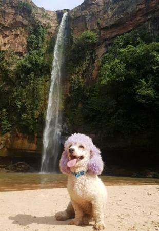 Juca tirou foto em frente a cachoeiro do Rio do Peixe, em Rio Negro (Foto: Arquivo pessoal)