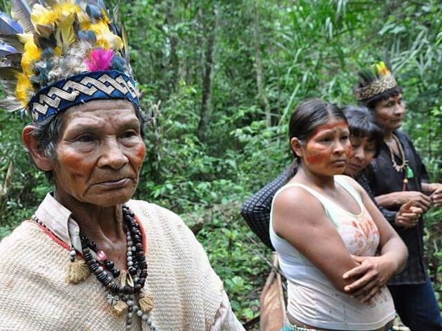 Moradores da Laranjeira-Ñanderu tiveram garantido o direito de permanecer em área de reserva legal. (foto: MPF/Divulgação)
