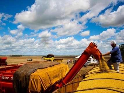 Produtores rurais de MS contarão com R$ 2 bilhões para financiar a safra