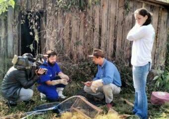 Técnicos da Iagro verificando propriedade de Itaporã (Foto: Divulgação)