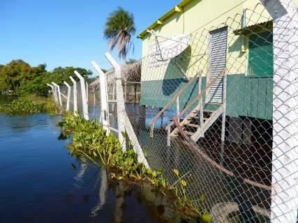 Rio Paraguai sobe e cheia pode de ser uma das maiores já registradas