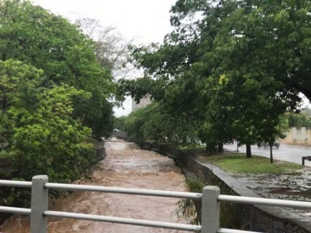 Nível do córrego Prosa subiu durante a chuva...