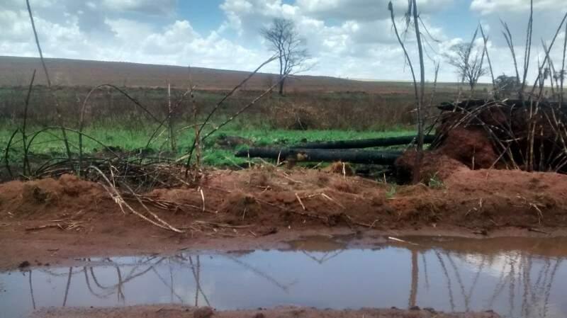 Incêndio alcançou área de preservação permanente (Foto: Divulgação/PMA)