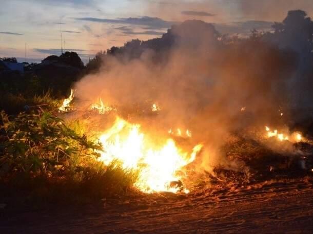Maior parte dos incêndios é intencional e visa acabar com o mato ou lixo encontrado em terreno baldio. (Foto: Site Jornal da Nova)