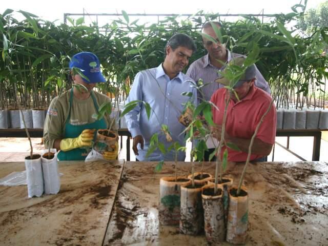 Prefeito de Campo Grande conferiu de perto as mudas que foram produzidas (Foto: Divulgação)