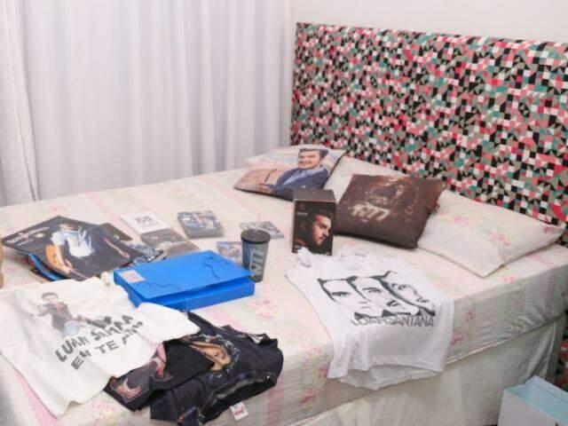 Camisetas, DVDs, almofadas, copo e outros objetos que a fã guarda no quarto. (Foto: Paulo Francis)
