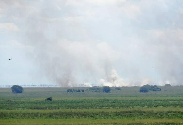 A imagem foi feita durante queimada na área do Porto Geral no ano passado. (Foto: Leandro Oliveira/Capital do Pantanal)