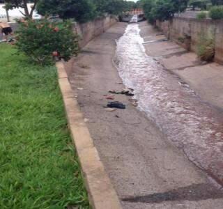 Lixo foi arremessado pelo homem flagrado no córrego de Campo Grande (Foto: Repórter News)