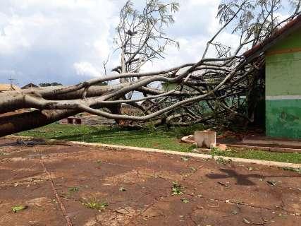 Chuva derruba árvores e destelha escola e casas em Bandeirantes