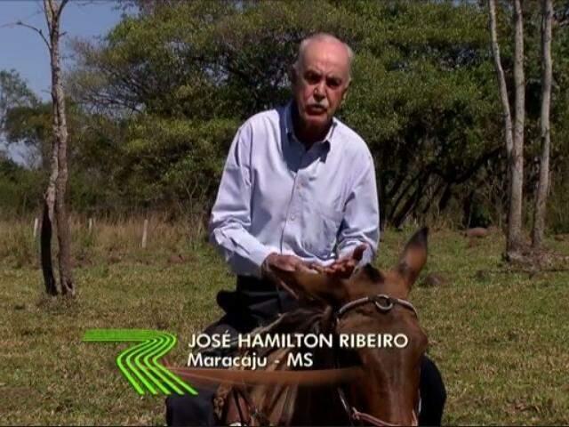 Da última visita ao Estado, reportagem foi feita em Maracaju, na fazenda de Almir Sater. (Foto: Reprodução/Globo Rural)