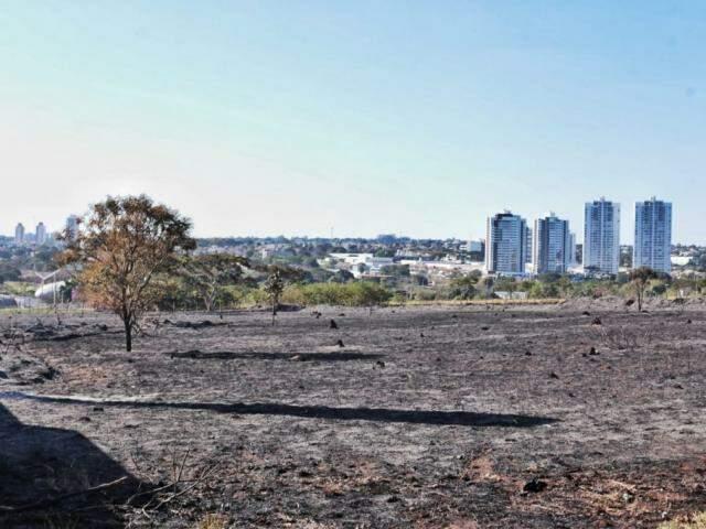 Área devastada pelo fogo em Campo Grande; um dos risco da baixa umidade relativa do ar. (Foto: Fernando Antunes)