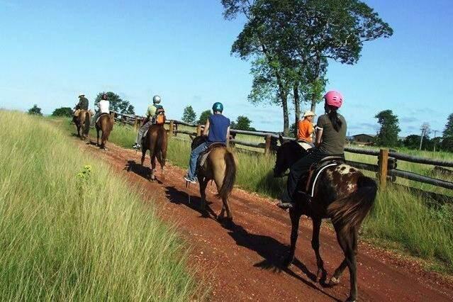 Cavalgada pelo Pantanal. (Foto: Heberton Alves)
