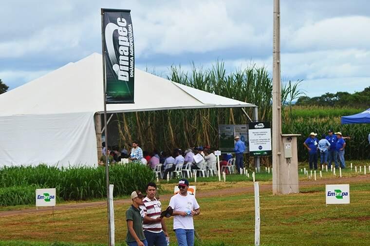 Lançamento da Dinapec vai ocorrer na quarta-feira (Foto: Divulgação/Famasul)