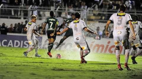 Mesmo com empate, Palmeiras segue invicto e com melhor campanha da série A