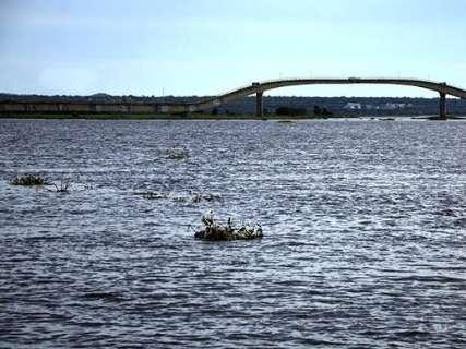 Nível do Rio Paraguai começa a subir antes do previsto no Pantanal