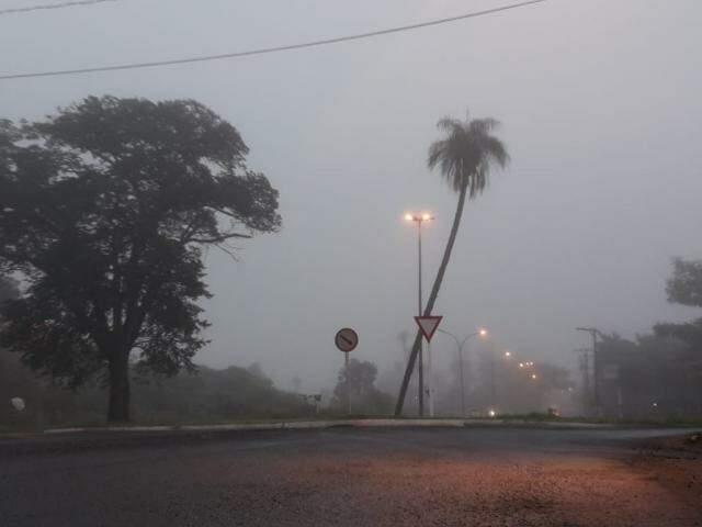 Rotatória na Avenida Três Barras durante nevoeiro na manhã deste sábado (Foto: RIcardo Campos Jr.)