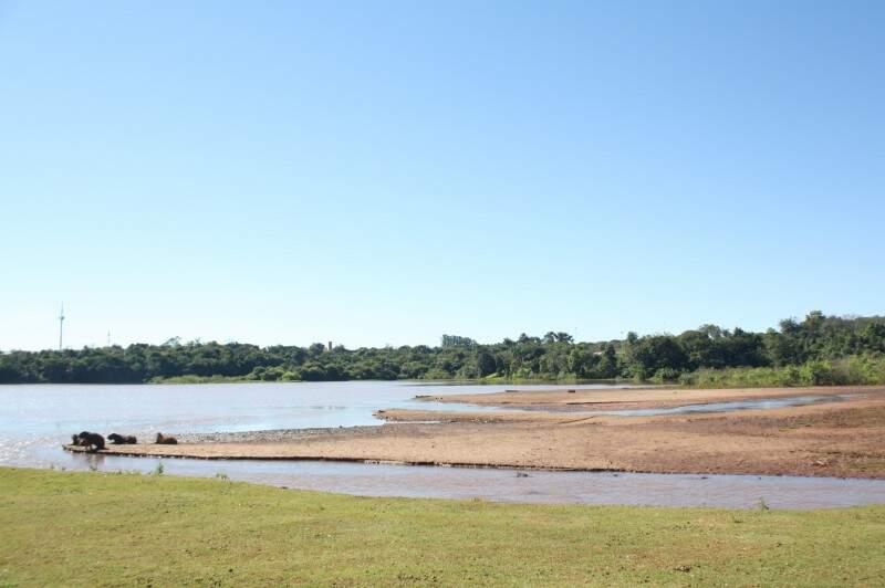 Um grande banco de areia vem se formando no campus da UFMS (Foto: Marcos Ermínio)