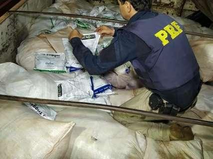 PRF encontra carga de agrotóxicos avaliada em R$ 1,5 milhão na BR-163