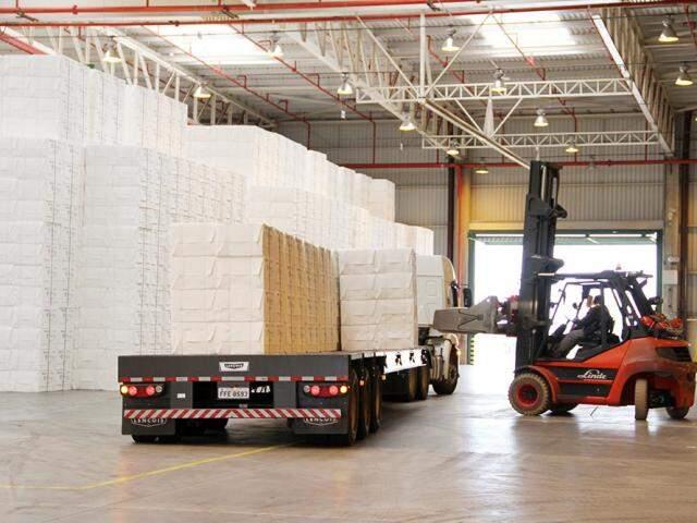 Celulose e papel está entre os grupos responsáveis pelo maior volume de exportação de MS. (Foto: Divulgação: Fiems)