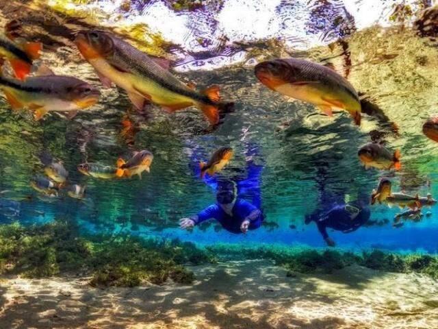 Flutuação no Rio da Prata é um dos passeios finalistas. (Foto: Márcio Cabral/Recanto Ecológico Rio da Prata)