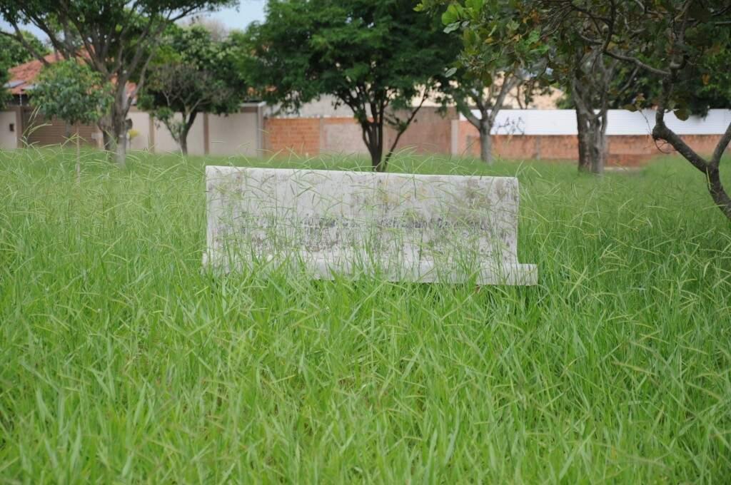 """Banco """"desaparece"""" em meio ao mato que cresceu muito rapidamente nos últimos dias, com as constantes chuvas. (Foto: Paulo Francis)"""
