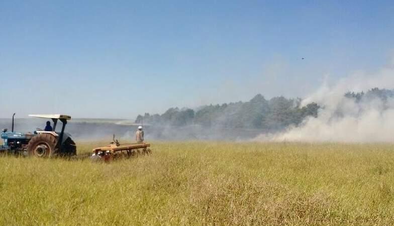 Umidade relativa do ar baixa e ventos dificultaram no trabalho do Corpo de Bombeiros no controle do fogo. (Foto: Chapadense News/ Divulgação)