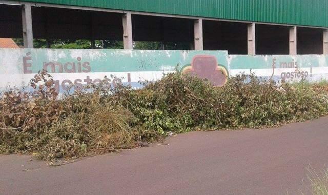 Entulho fica no fundo da escola  Profª. Alice Nunes Zampiere (Foto: Direto das Ruas)